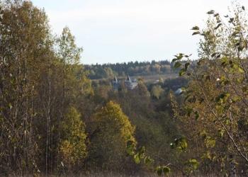 Продажа земельных участков в дачном поселке Отрадный (Подмосковье)