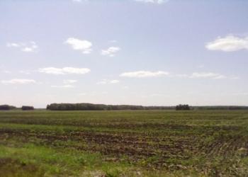 Продам земельный участок 63 га под тепличный комплекс или другое с/х производств