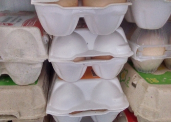 Продаю инкубационное яйцо , цыплят и кур несушек