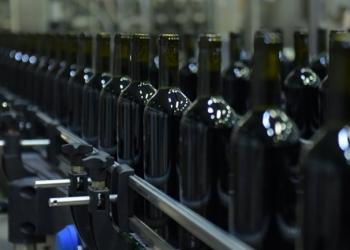 Продам большой винзавод в Крыму