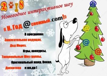 Новогоднее интерактивное шоу