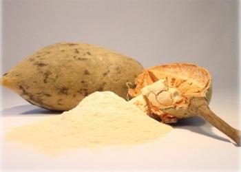 Продаем порошок из плодов баобаба.