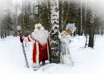 Дед Мороз и Снегурочка на дом. Тюмень