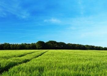 Продается земельный участок 25соток для ИЖС, газ, свет вода на границе участка