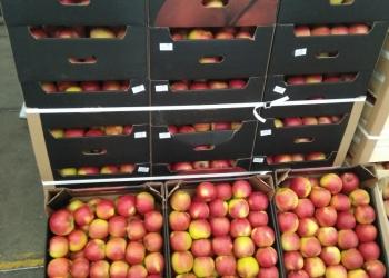 Яблоко из Молдавии