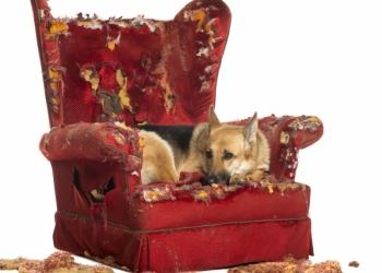 Перетяжка/обивка мебели! Низкие цены!