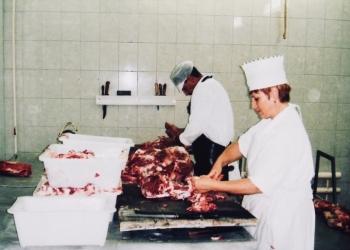 Продаётся действующее мясоперерабатывающее предприятие