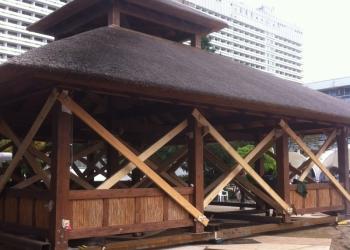 Подъём и перенос Дома Перемещение павилионов и строительных конструкций