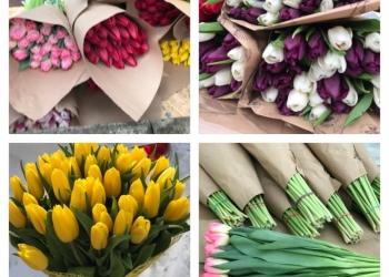 Тюльпаны к 8 Марта 2019