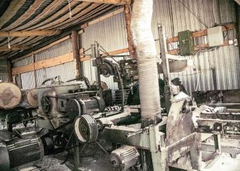 Производство по переработке лиственной древесины