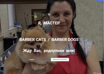 МУРКА. Груминг. Стрижка собак,кошек. Новосибирск
