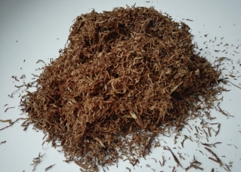 Табак ( семена +)