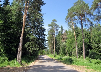 Лесные участки со всеми коммуникациями в охраняемом КП