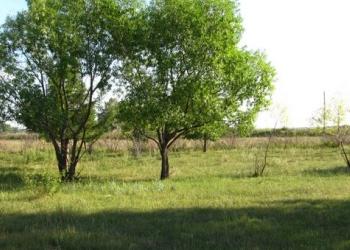 Продам большие земельные участки