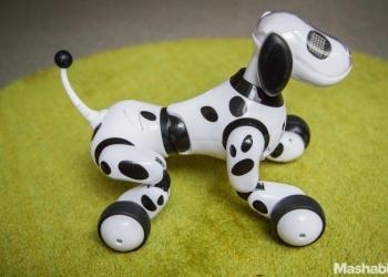 Интерактивная собака зумер новая Zoomer