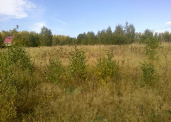 30 соток с забором в д. Леньково, рядом река, водохранилище. Ижс