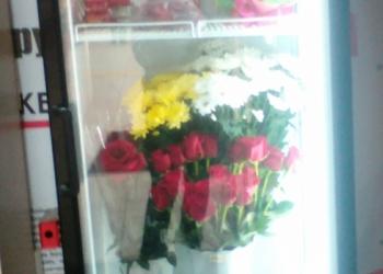 Продам холодильник, витрины.