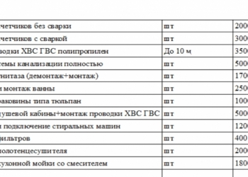мастер на час/муж на час/сантехник/электрик