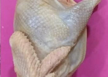 Курица суповая (весовая) Халяль
