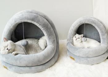 Когтеточка, игровой комплекс для кошки.