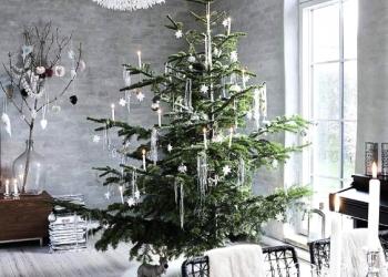 Живая елка