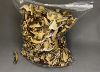 Белые сушёные грибы.